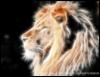 Ксения: лев