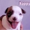 Ana Vicente Ferreira: happy