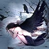 Brig: raven