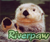 riverpaw userpic