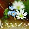 translucentmask userpic