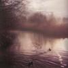 aquaticbaby userpic