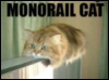 cat, monorail