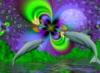 acid_orchid