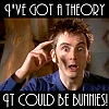 Amarin Rose: DW - Bunny Theory