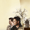 |528491| wishful feather ⇧: Dean/Castiel | We'll never fade away