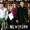 tiki b.: CSI ny team