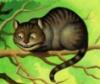 Che Cat