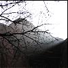 My Photos - Zion Cliffs