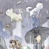raining cats&dogs