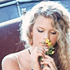 Taylor: scent of a flower