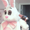 Andy: Stock:Damn i look good- Easter Bunny