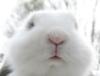 gorgeousaffair userpic