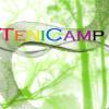 Camp Tenipuri Mods