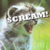 scream, kittens