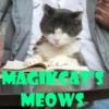 magikcat112