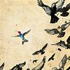 aloneinmontauk: birds
