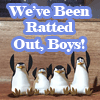 boltgirl426: RattedOut!