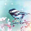 twasadark: Bird - sparrow - spring