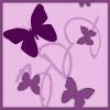 Butterfly Dreams Inc.