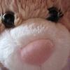 Charley // Closeup