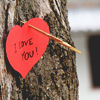 i love you on tree