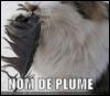Nom de Plume: intothewoods