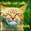 Kate: charlie cat bullshit