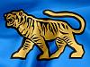 adudenok: Тигр
