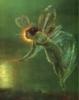 Spirit Fairies