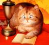 cat_in_dreams userpic