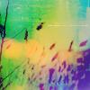 starbitrary userpic