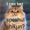 Speshul Chikin