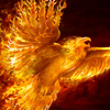 rise from the ashes, phoenix