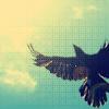 farideh129 userpic