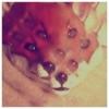 sasha_lipton userpic