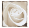 dreaminofroses userpic