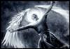 Freedom, Truth, Peace, Angel, Light