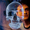 harry potter fic journal of fallenmelody