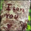 I love you tree