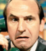 Reginald Iolanthe Perrin