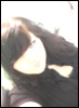 kissmeimunlucky userpic