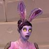 zev bunny