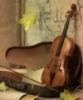 скрипка и немного нежно