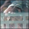 Funhouse Mirror - self-portrait