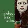 Lillian: twilight → it's okay little cactus
