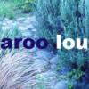 aroolou userpic