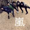 Senorita Emi: arashi