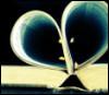 heart, book