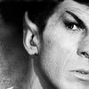 ST Spock's  Eyebrow